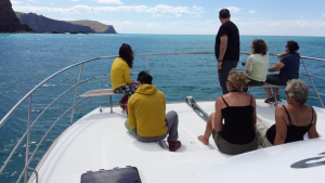 Akaroa Harbour Cruise